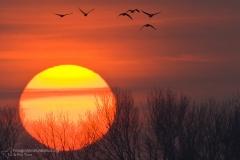 landscape_paesaggi_foto_ambientali_varie-12